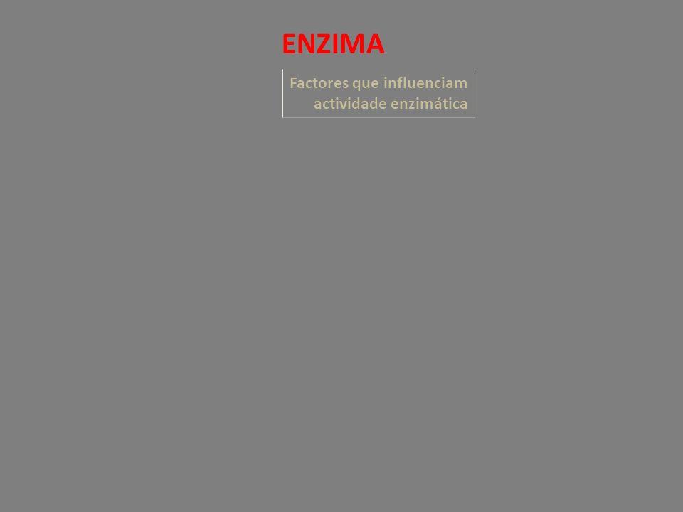 Factores que influenciam actividade enzimática ENZIMA