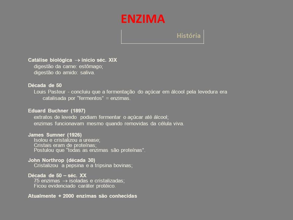História ENZIMA Catálise biológica início séc.