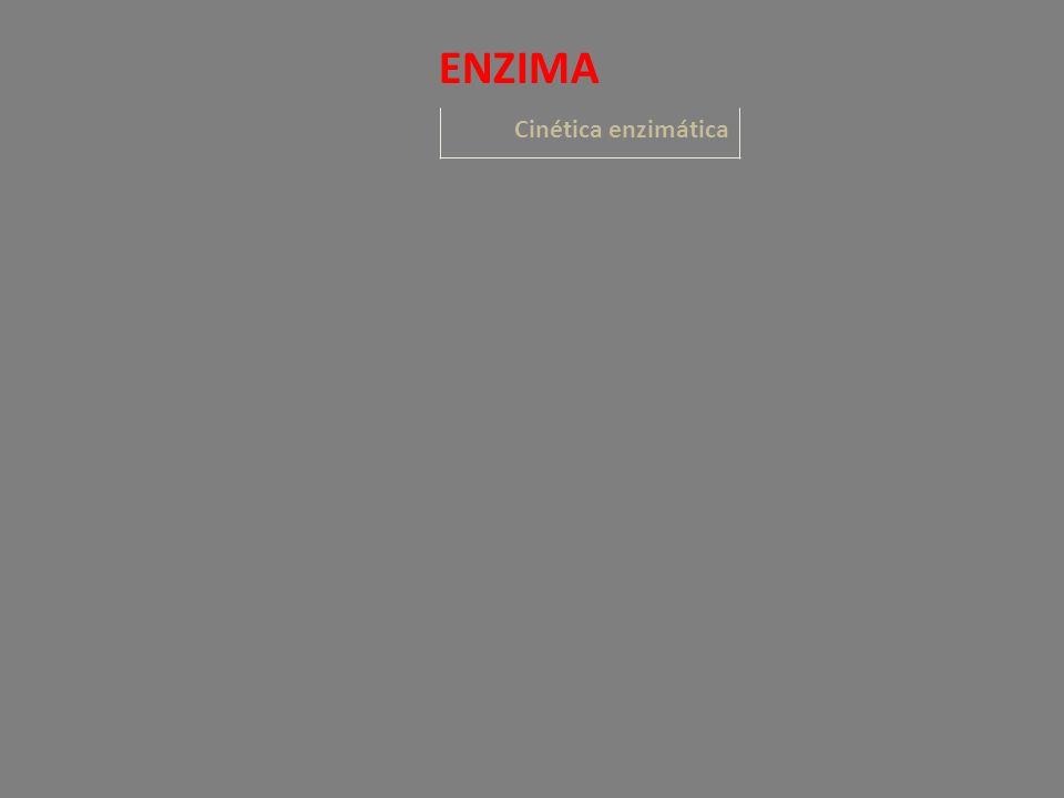 Cinética enzimática ENZIMA
