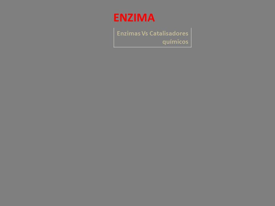 Enzimas Vs Catalisadores químicos ENZIMA