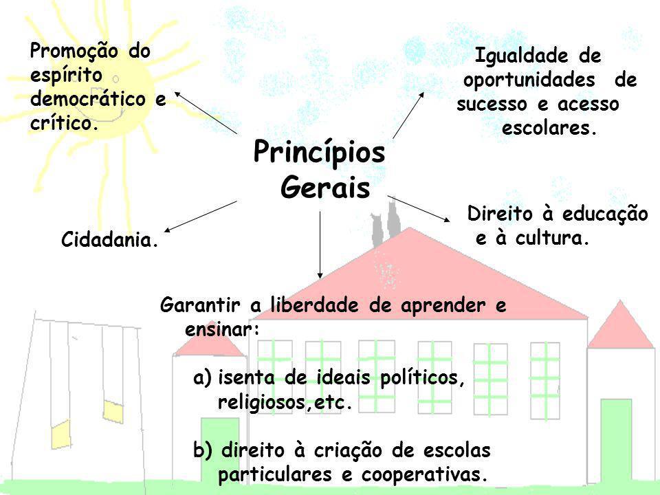 Princípios Gerais Direito à educação e à cultura. Igualdade de oportunidades de sucesso e acesso escolares. Cidadania. Promoção do espírito democrátic