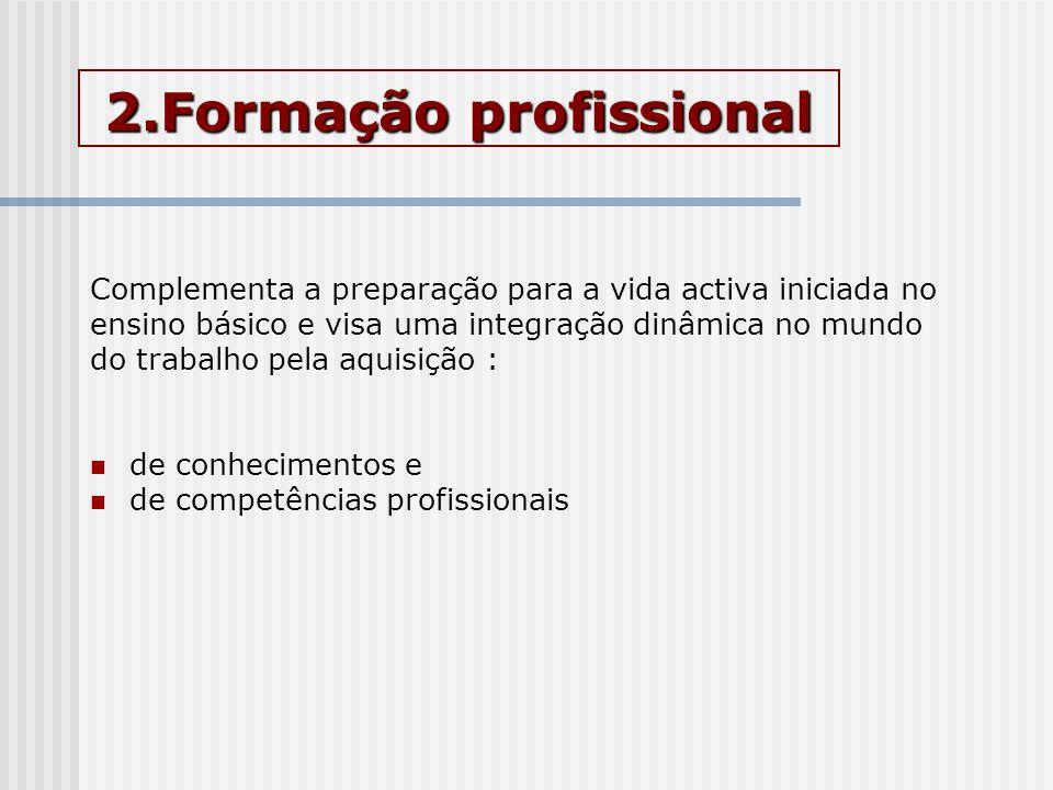 2.Formação profissional Complementa a preparação para a vida activa iniciada no ensino básico e visa uma integração dinâmica no mundo do trabalho pela