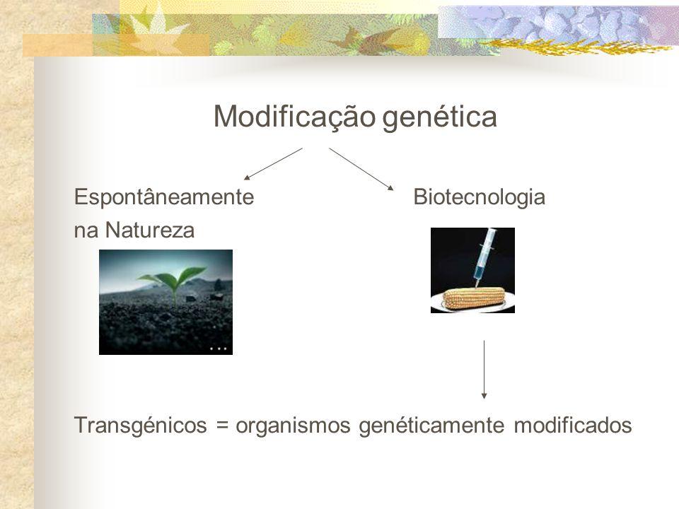 Modificação genética Espontâneamente Biotecnologia na Natureza Transgénicos = organismos genéticamente modificados