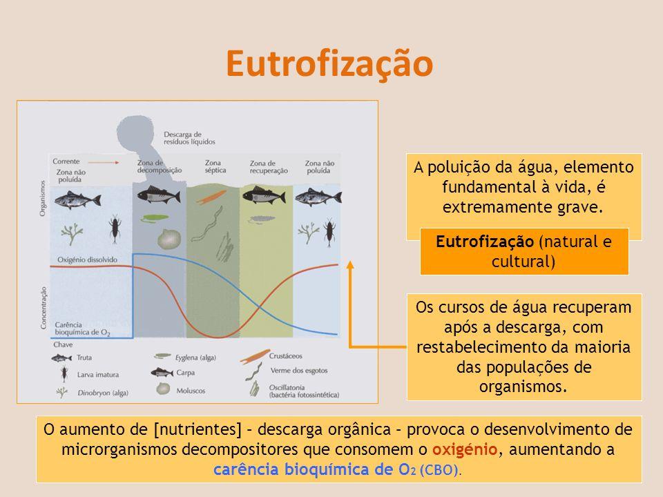 Eutrofização A poluição da água, elemento fundamental à vida, é extremamente grave. Eutrofização (natural e cultural) O aumento de [nutrientes] – desc