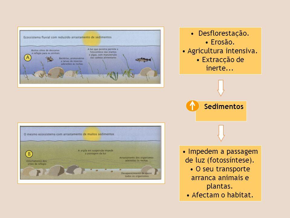 Sedimentos Desflorestação. Erosão. Agricultura intensiva. Extracção de inerte... Impedem a passagem de luz (fotossíntese). O seu transporte arranca an
