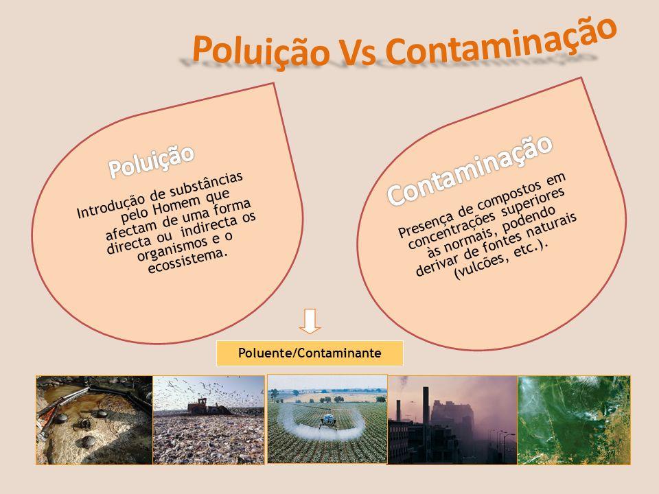 Poluente/Contaminante