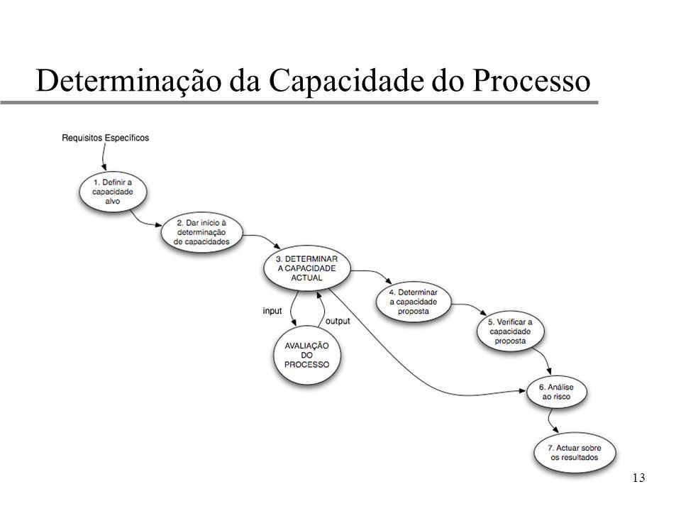 13 Determinação da Capacidade do Processo
