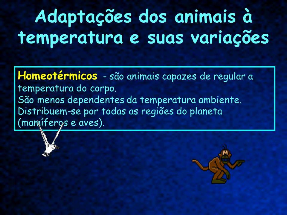 Adaptações dos animais à temperatura e suas variações Homeotérmicos - são animais capazes de regular a temperatura do corpo. São menos dependentes da
