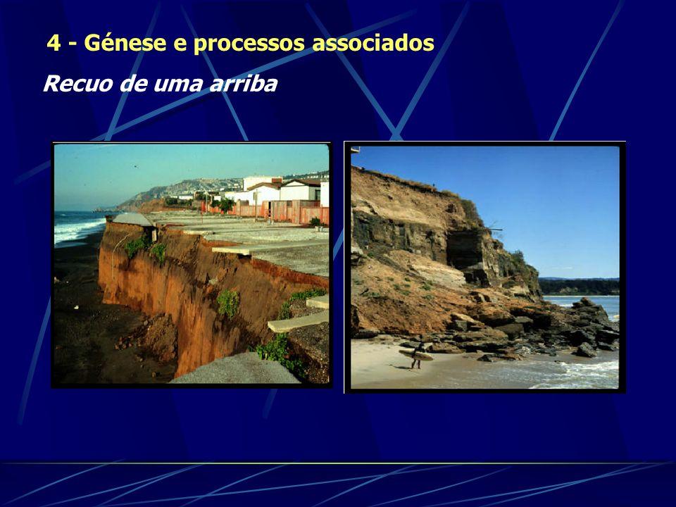 4 - Génese e processos associados Recuo de uma arriba