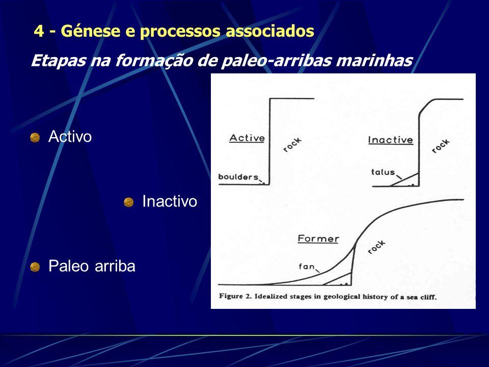 Activo Inactivo Paleo arriba 4 - Génese e processos associados Etapas na formação de paleo-arribas marinhas
