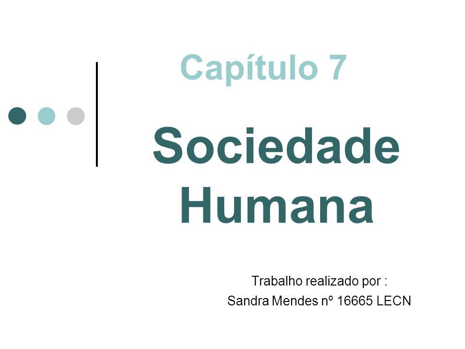Capítulo 7 Sociedade Humana Trabalho realizado por : Sandra Mendes nº 16665 LECN