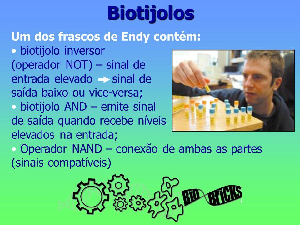 Biotijolos Um dos frascos de Endy contém: biotijolo inversor (operador NOT) – sinal de entrada elevado sinal de saída baixo ou vice-versa; biotijolo AND – emite sinal de saída quando recebe níveis elevados na entrada; Operador NAND – conexão de ambas as partes (sinais compatíveis)
