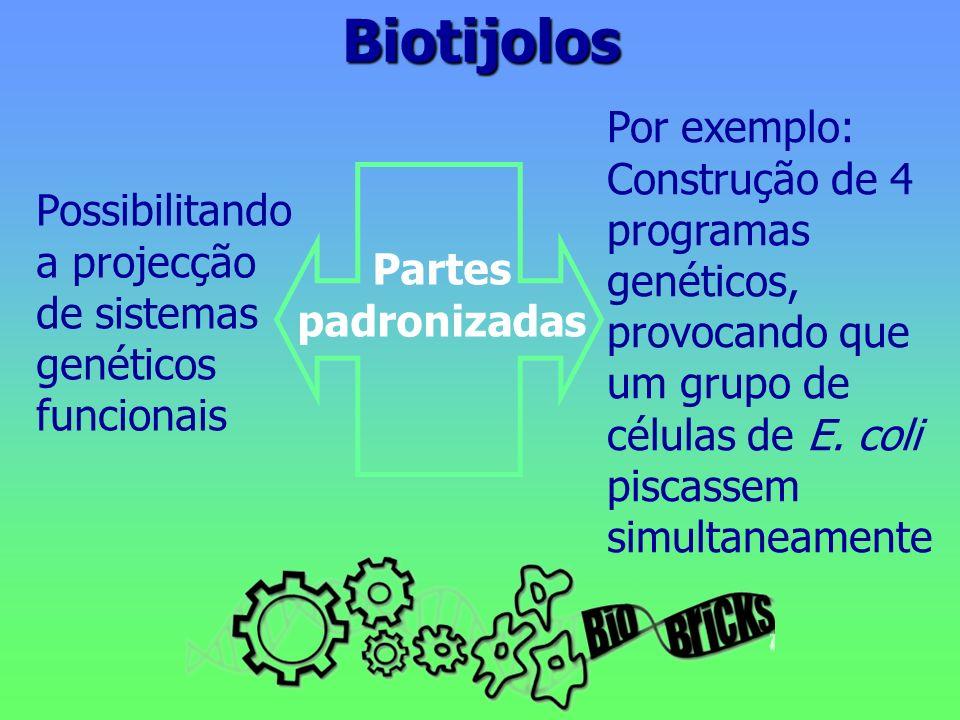 Biotijolos Possibilitando a projecção de sistemas genéticos funcionais Partes padronizadas Por exemplo: Construção de 4 programas genéticos, provocando que um grupo de células de E.