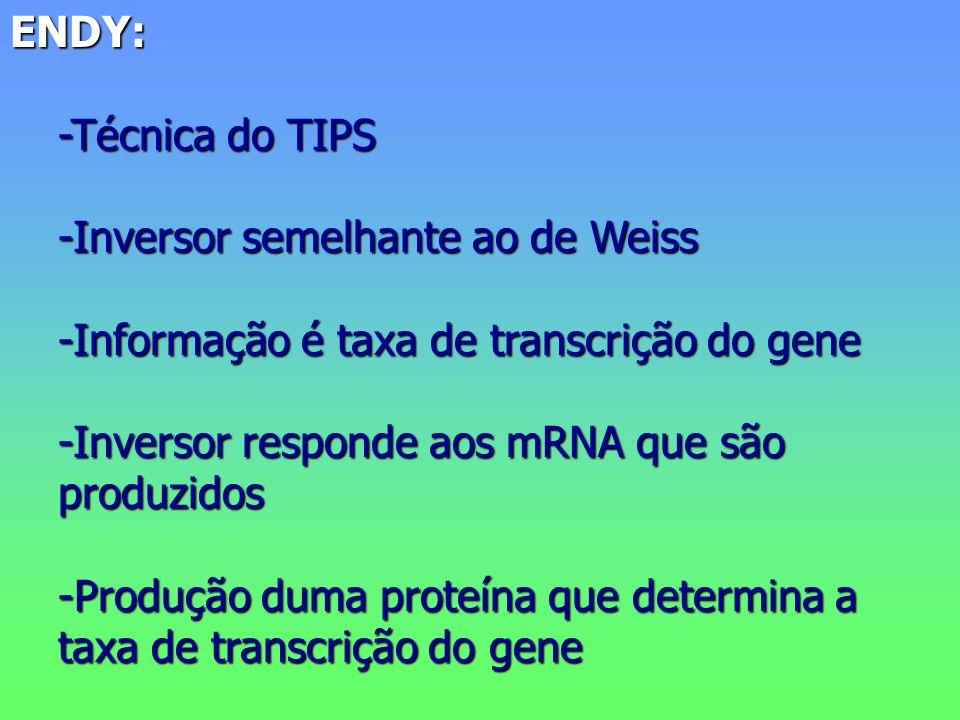 ENDY: -Técnica do TIPS -Inversor semelhante ao de Weiss -Informação é taxa de transcrição do gene -Inversor responde aos mRNA que são produzidos -Produção duma proteína que determina a taxa de transcrição do gene