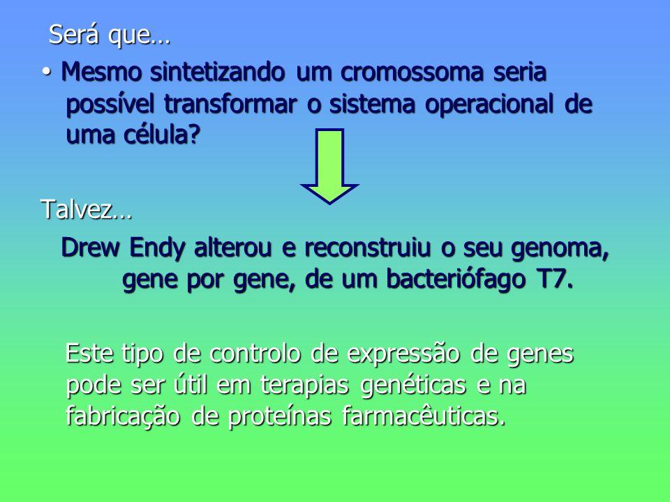 Será que… Será que… Mesmo sintetizando um cromossoma seria possível transformar o sistema operacional de uma célula? Mesmo sintetizando um cromossoma