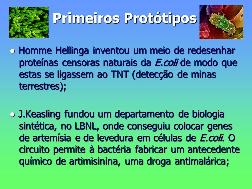 Primeiros Protótipos Homme Hellinga inventou um meio de redesenhar proteínas censoras naturais da E.coli de modo que estas se ligassem ao TNT (detecção de minas terrestres); Homme Hellinga inventou um meio de redesenhar proteínas censoras naturais da E.coli de modo que estas se ligassem ao TNT (detecção de minas terrestres); J.Keasling fundou um departamento de biologia sintética, no LBNL, onde conseguiu colocar genes de artemísia e de levedura em células de E.coli.