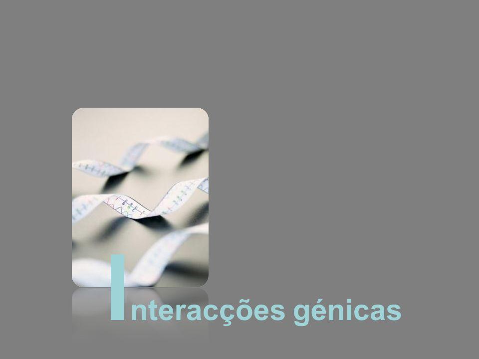 I nteracções génicas