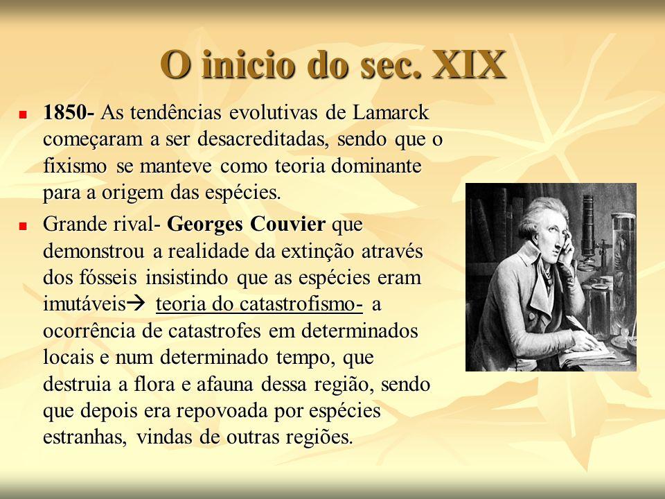 O inicio do sec. XIX 1850- As tendências evolutivas de Lamarck começaram a ser desacreditadas, sendo que o fixismo se manteve como teoria dominante pa