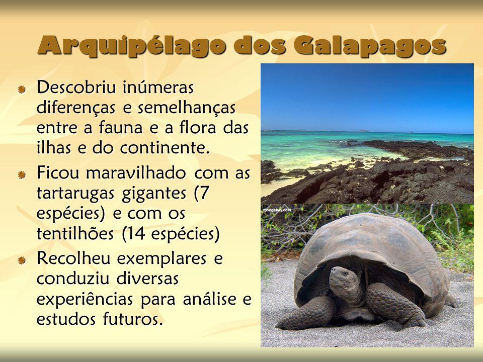 Arquipélago dos Galapagos Descobriu inúmeras diferenças e semelhanças entre a fauna e a flora das ilhas e do continente. Ficou maravilhado com as tart