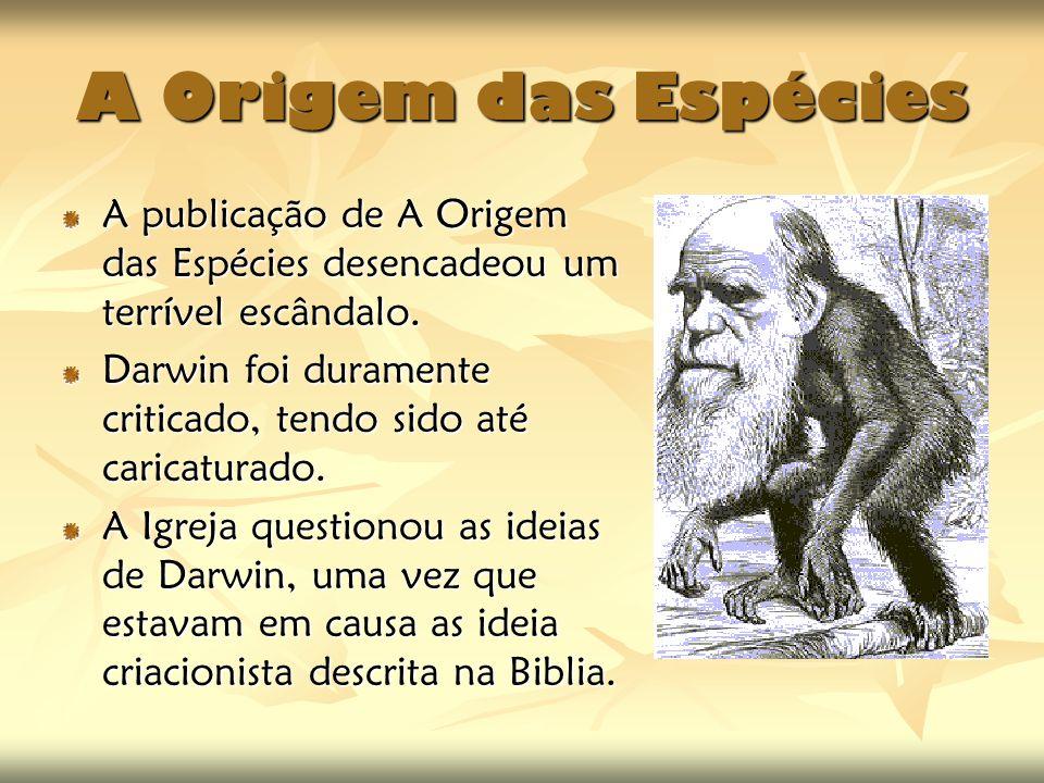 A Origem das Espécies A publicação de A Origem das Espécies desencadeou um terrível escândalo. Darwin foi duramente criticado, tendo sido até caricatu