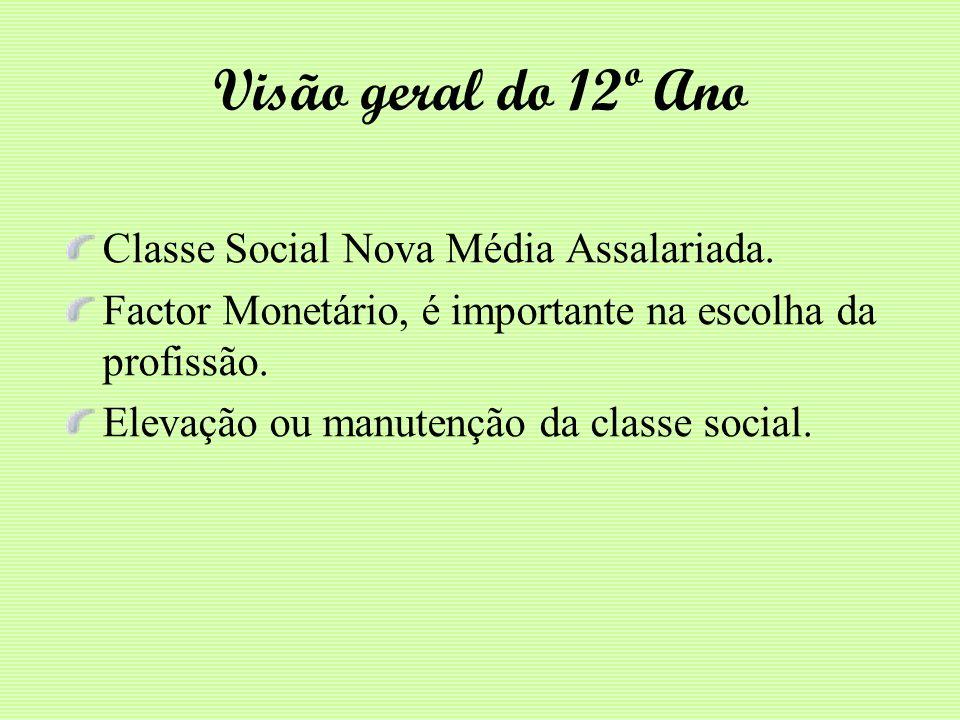 Visão geral do 12º Ano Classe Social Nova Média Assalariada. Factor Monetário, é importante na escolha da profissão. Elevação ou manutenção da classe