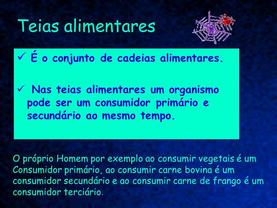 Teias alimentares É o conjunto de cadeias alimentares. Nas teias alimentares um organismo pode ser um consumidor primário e secundário ao mesmo tempo.