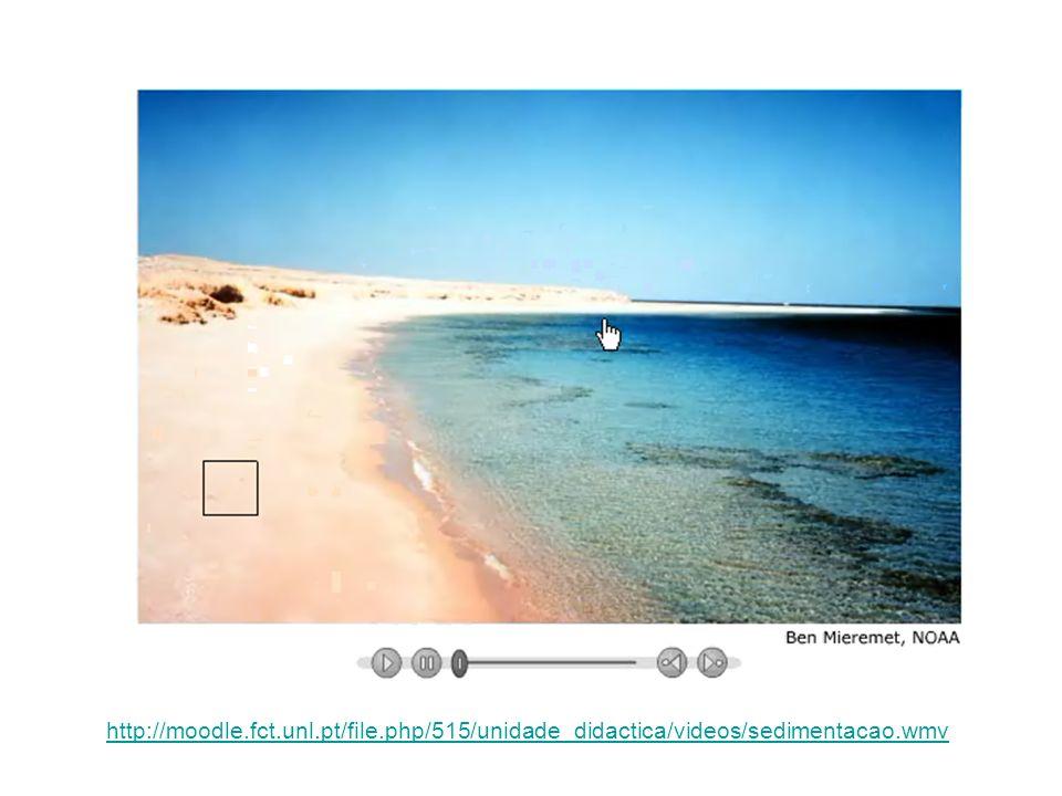 http://moodle.fct.unl.pt/file.php/515/unidade_didactica/videos/sedimentacao.wmv