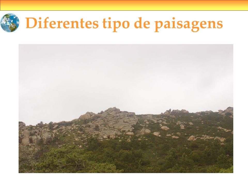 Diferentes tipo de paisagens