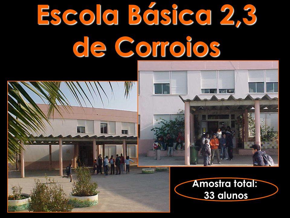 Escola Básica 2,3 de Corroios Amostra total: 33 alunos