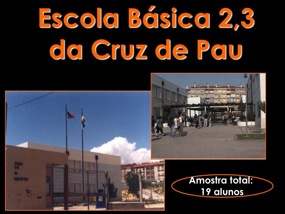 Escola Básica 2,3 da Cruz de Pau Amostra total: 19 alunos