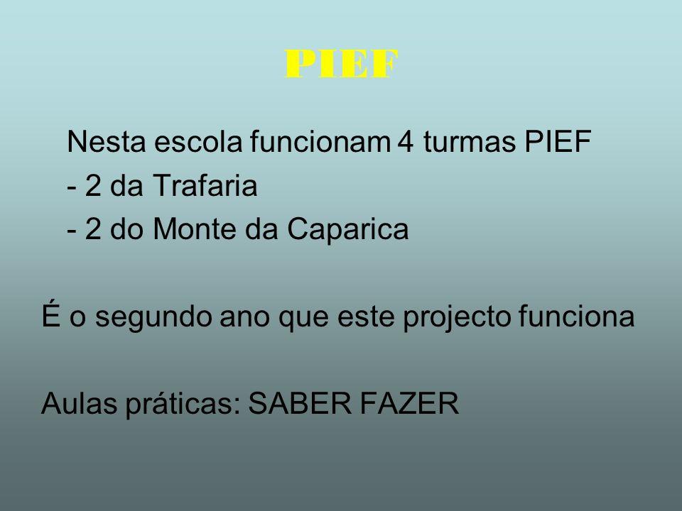 PIEF Nesta escola funcionam 4 turmas PIEF - 2 da Trafaria - 2 do Monte da Caparica É o segundo ano que este projecto funciona Aulas práticas: SABER FA