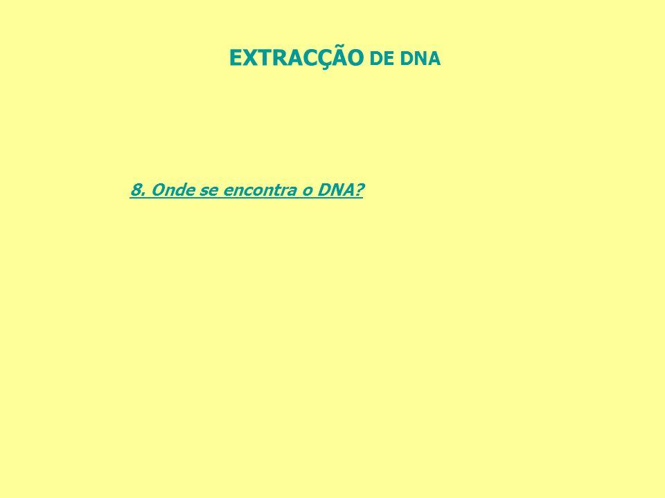 EXTRACÇÃO DE DNA 8. Onde se encontra o DNA?