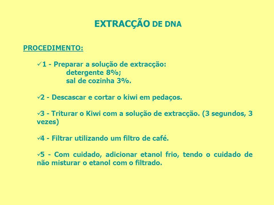 EXTRACÇÃO DE DNA PROCEDIMENTO: 1 - Preparar a solução de extracção: detergente 8%; sal de cozinha 3%. 2 - Descascar e cortar o kiwi em pedaços. 3 - Tr