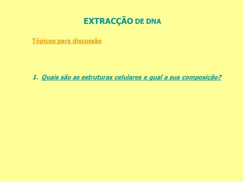 EXTRACÇÃO DE DNA O DNA é insolúvel em álcool e deste modo se separa da solução.