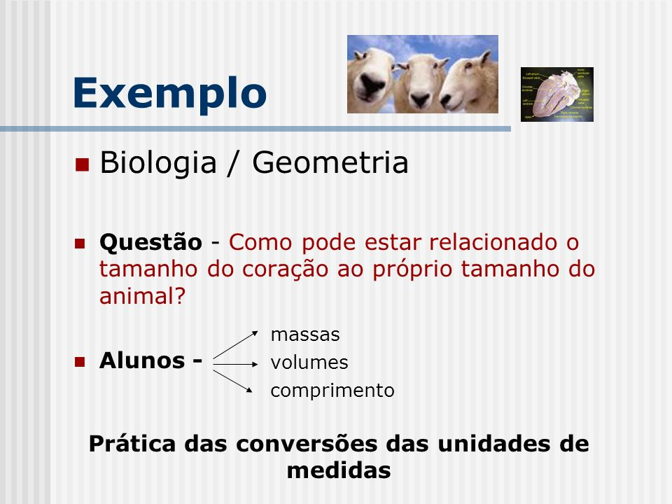 Exemplo- Rubric for Structured Inquiry Activity of a Taxonomic Group.