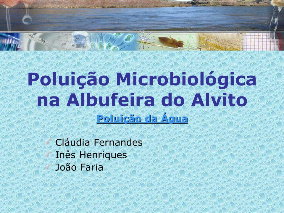 Poluição Microbiológica na Albufeira do Alvito Poluição da Água Cláudia Fernandes Inês Henriques João Faria