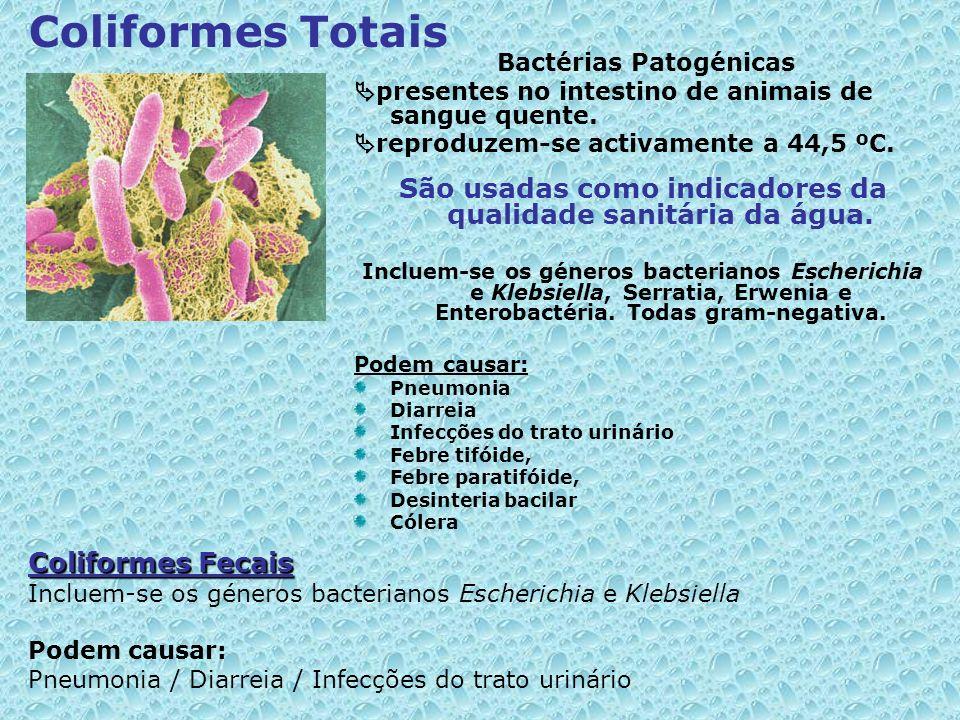 Bactérias Patogénicas presentes no intestino de animais de sangue quente. reproduzem-se activamente a 44,5 ºC. São usadas como indicadores da qualidad