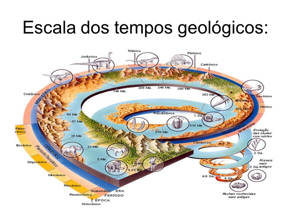 Escala dos tempos geológicos: