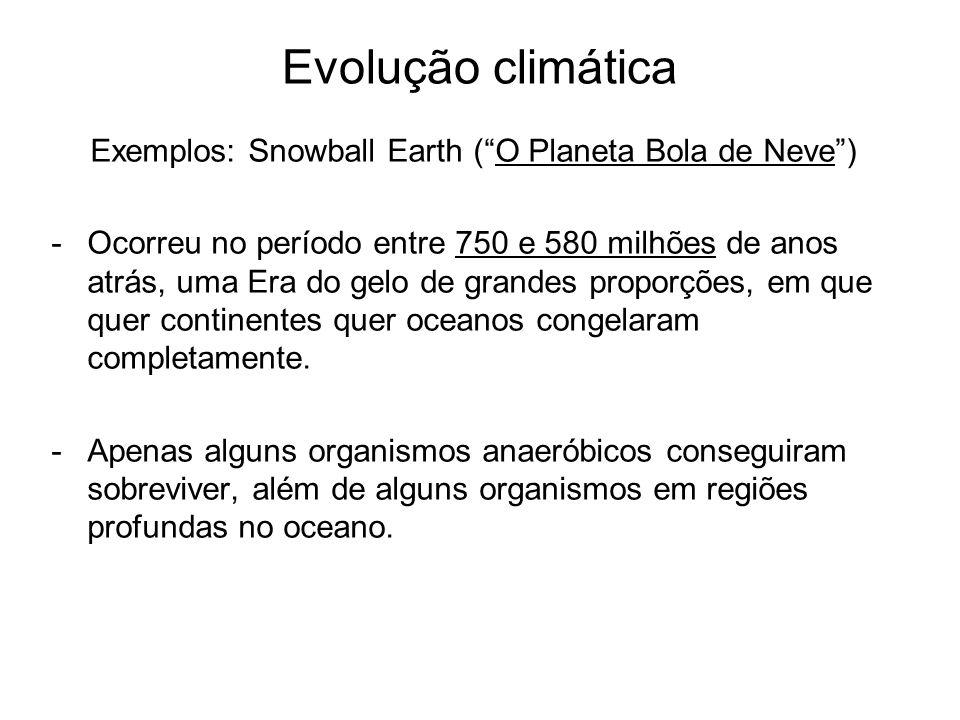 Evolução climática Exemplos: Snowball Earth (O Planeta Bola de Neve) -Ocorreu no período entre 750 e 580 milhões de anos atrás, uma Era do gelo de gra