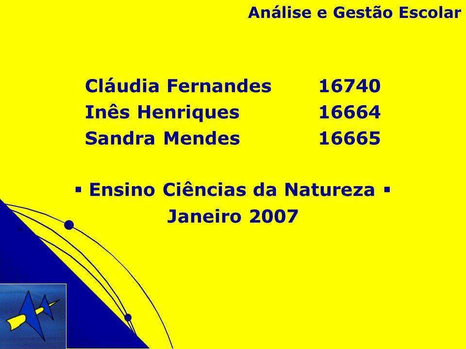 Cláudia Fernandes 16740 Inês Henriques 16664 Sandra Mendes 16665 Ensino Ciências da Natureza Janeiro 2007 Análise e Gestão Escolar