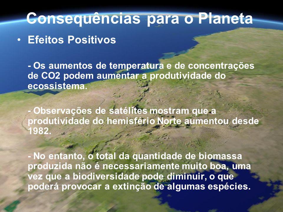 Consequências para o Planeta Efeitos Positivos - Os aumentos de temperatura e de concentrações de CO2 podem aumentar a produtividade do ecossistema. -