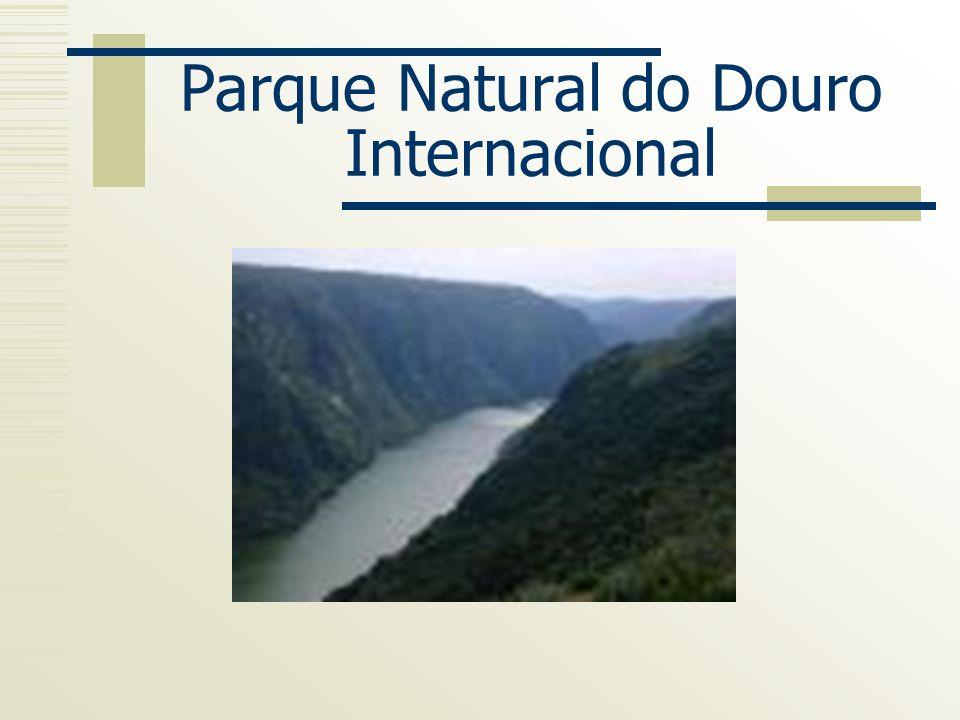 Objectivos do PNDI Valorizar e conservar o património natural Promover a melhoria da qualidade de vida das populações, em harmonia com a conservação da natureza.