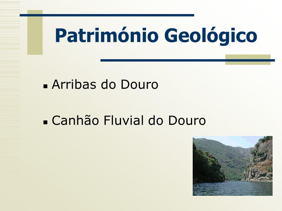 Património Geológico Arribas do Douro Canhão Fluvial do Douro