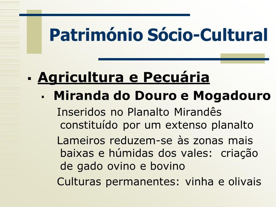 Património Sócio-Cultural Agricultura e Pecuária Miranda do Douro e Mogadouro Inseridos no Planalto Mirandês constituído por um extenso planalto Lamei