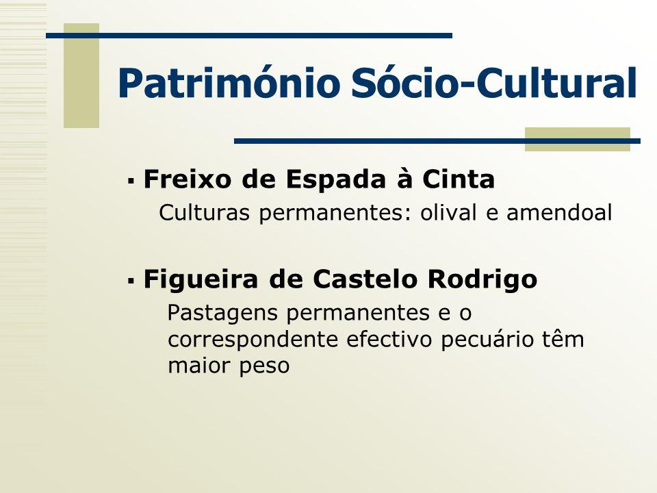 Património Sócio-Cultural Freixo de Espada à Cinta Culturas permanentes: olival e amendoal Figueira de Castelo Rodrigo Pastagens permanentes e o corre