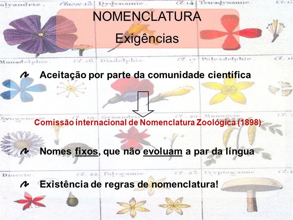 Exigências Aceitação por parte da comunidade científica Comissão internacional de Nomenclatura Zoológica (1898) Nomes fixos, que não evoluam a par da