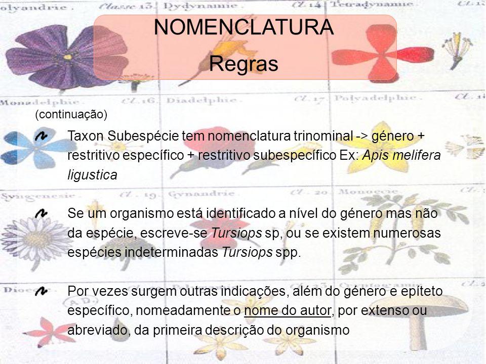 (continuação) Taxon Subespécie tem nomenclatura trinominal -> género + restritivo específico + restritivo subespecífico Ex: Apis melifera ligustica Se