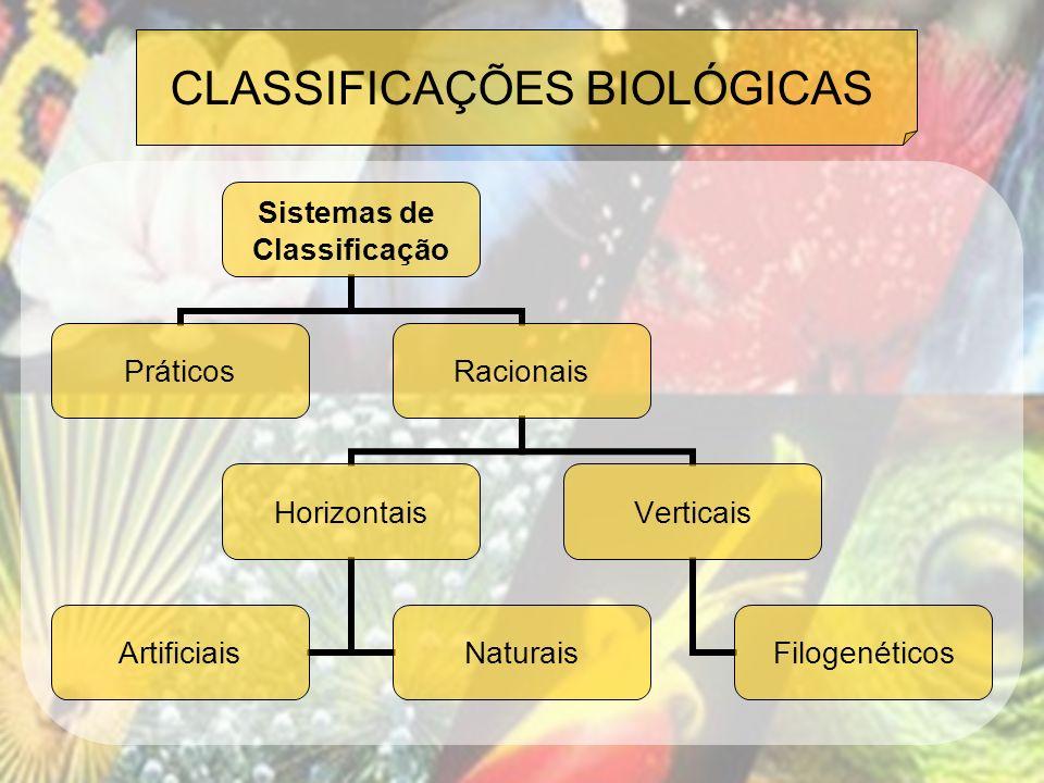 CLASSIFICAÇÕES BIOLÓGICAS Sistemas de Classificação PráticosRacionais Horizontais ArtificiaisNaturais Verticais Filogenéticos