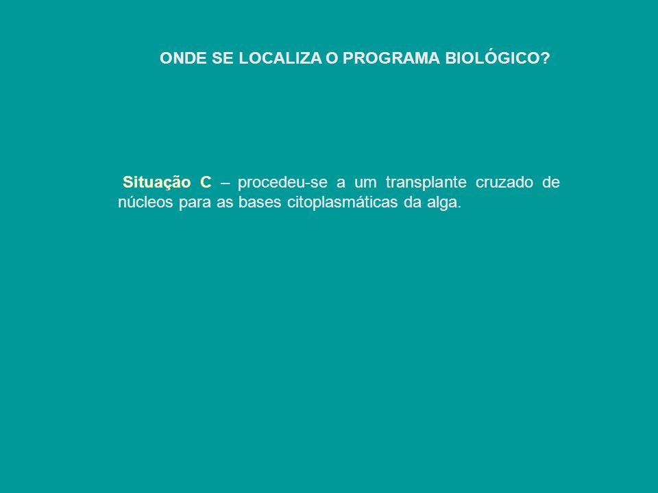 ONDE SE LOCALIZA O PROGRAMA BIOLÓGICO? Situação C – procedeu-se a um transplante cruzado de núcleos para as bases citoplasmáticas da alga.