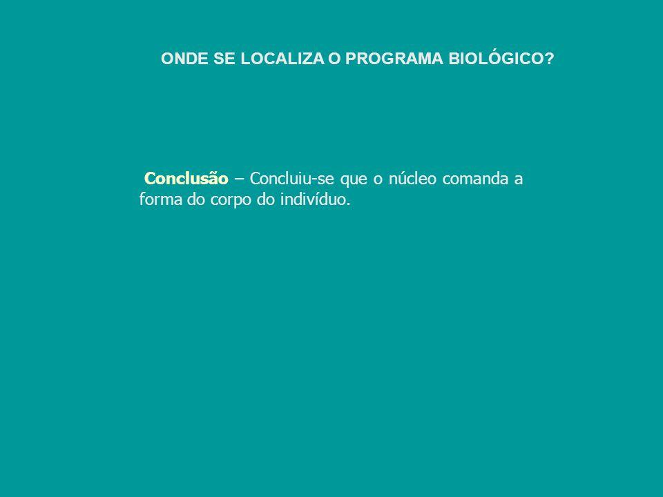 ONDE SE LOCALIZA O PROGRAMA BIOLÓGICO? Conclusão – Concluiu-se que o núcleo comanda a forma do corpo do indivíduo.